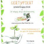 stan_po_zielonej_16